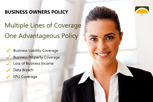 Find more affordable quotes on your next Business Owners Insurance Policy.