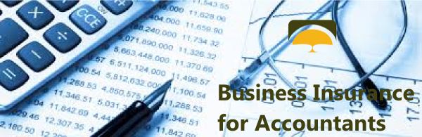 Small business liability insurance quote for accounting firm.